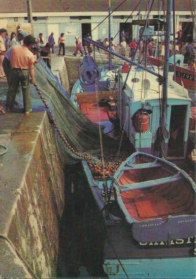 St-Gilles-Croix-de-Vie, débarquement d'un filet tournant.