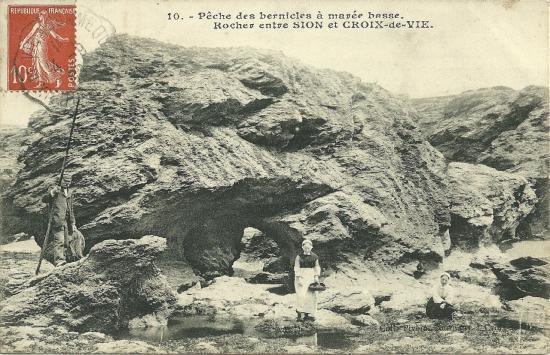 Croix-de-Vie, pêche des berniques à marée basse.