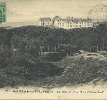 St-Gilles-sur-Vie, le bois de pins et les chalets Sroff.