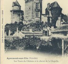 Apremont-sur-Vie, les tours du château.