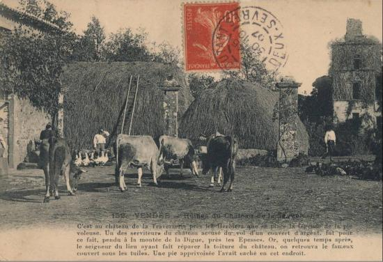 Les herbiers, château de la Traversière.