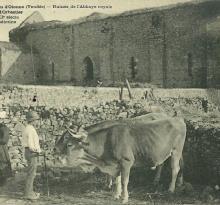 Château d'Olonne, ruines de l'abbaye Royale.