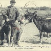 St-Gilles-Croix-de-Vie, la foire aux bourins.