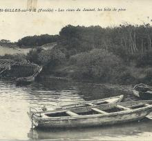St-Gilles-sur-Vie, les rives du Jaunay, les bois de pins.
