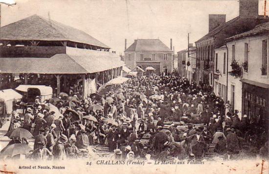 Challans, le marché aux volailles.