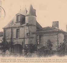 Le Poiré-sur-Vie, le château.