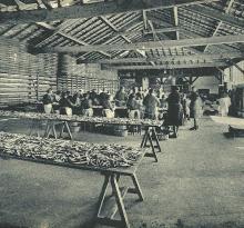 Croix-de-Vie, usine de conserves de sardines.